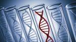 Diferencias notables con tres pruebas genómicas de cáncer de próstata